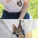 pocket rabbit
