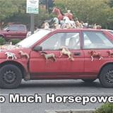 so much horsepower