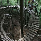 cool mountain bike trail