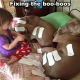 fixing the booboos