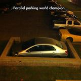 parallel parking champion
