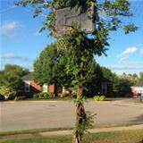cool basketball hoop