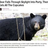 hell of a bear party