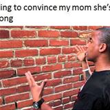 trying to convince mom