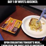 wifes absence