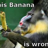 this banana is wrong