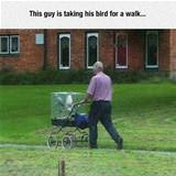 just taking my bird for a walk