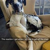get off the chair