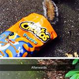 squirrel stealing cheetos