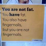 you are not fat
