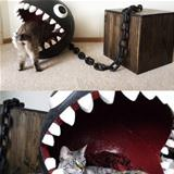 awesome cat bed