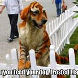feed your dog frosted flakes