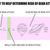 risk of bear attack