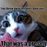 you threw away