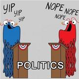 politics in a nutshell