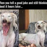 when you tell a good joke