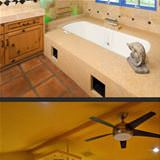 when the cat rules the house