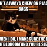 chewing plastic bags