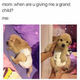 give me a grandchild