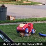 professional hide and seek player