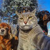selfie of the whole crew