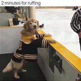2 minutes for ruffing