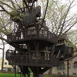 an epic tree house