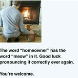 the word homeowner
