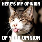 my opinion of your opinion