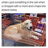 surprising your mom