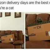 who loves amazon delivery the most