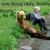 bearly ok