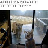 Mom Aunt Carol Is Here