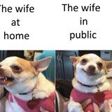 the wife at home and public