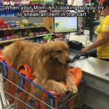 when your mom isnt looking