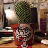 amazing cactus holder