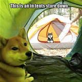 in tents stare down