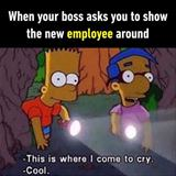 show the new employees around