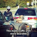 helping with traffic