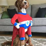 i am a super dog