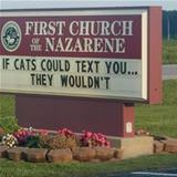 if cats could text you
