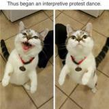 my protest dance
