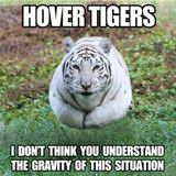 hover tigers