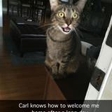 how to welcome home