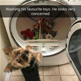 washing his favorite toys