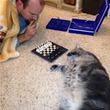 a chess match