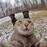 Getting A Selfie