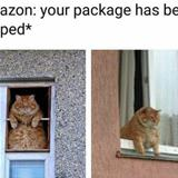 your package has been shipped