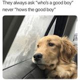 always with the whos a good boy