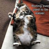 rolling used to be easier